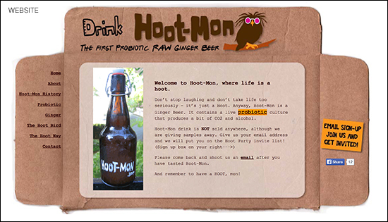 HootWebsite315 copy
